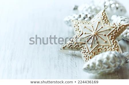 Christmas symbolisch star sneeuw Blauw Stockfoto © ozaiachin