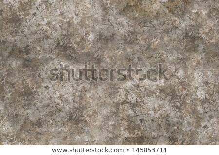Grungy distressed iron surface seamlessly tileable Stock photo © Balefire9