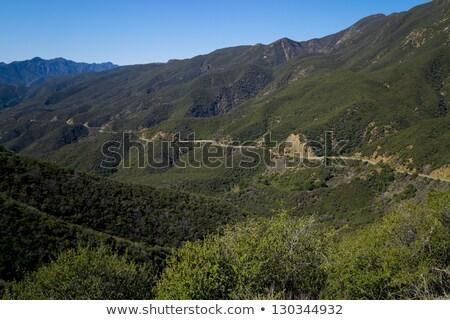 Izolált autópálya domboldal sáv távoli Kalifornia Stock fotó © swatchandsoda