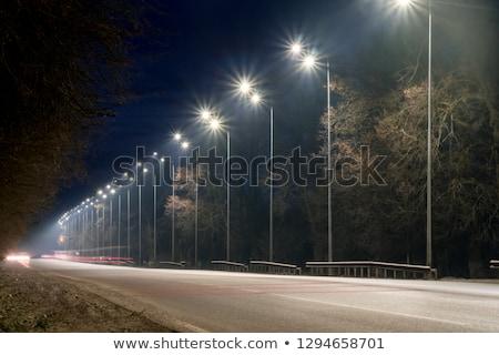 Streetlight or Street light Stock photo © ziprashantzi
