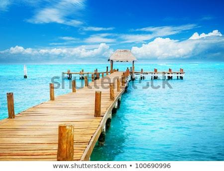 dock and tropical island stock photo © jkraft5