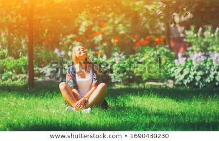 soothing zen abstract stock photo © kentoh
