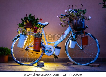 Beatiful street with flowers Stock photo © Nobilior