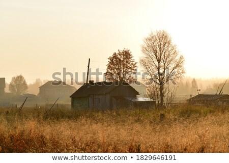 edad · rústico · casa · Rusia · blanco - foto stock © snyfer