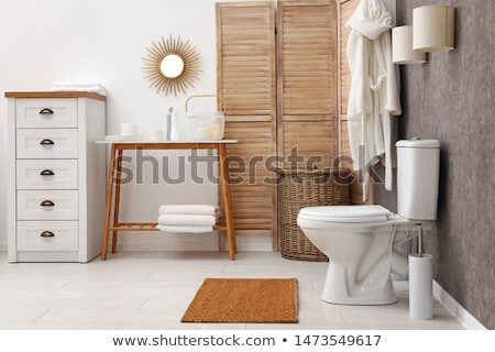 luxury sanitary toilet bowl on white background Stock photo © JohnKasawa