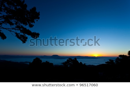 orange sunset over the misty valley stock photo © silkenphotography