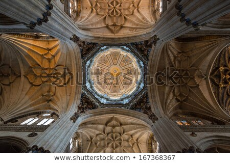 interior of cathedral in Salamanca, Castile and Leon, Spain Stock photo © phbcz