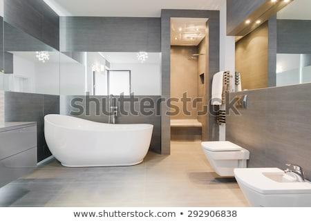 Badkamer tijdgenoot ontwerp interieur moderne armaturen Stockfoto © NiroDesign