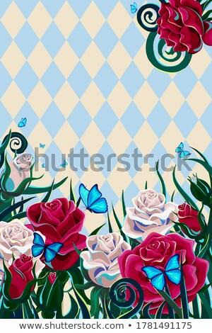 Vintage szachownica wzrosła kwiat sportu tabeli Zdjęcia stock © carodi