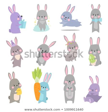Vrolijk pasen bunny hart vector ingesteld ontwerp Stockfoto © beaubelle