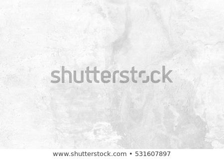 Textura grunge blanco cemento pared diseno pintura Foto stock © meinzahn