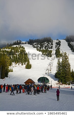 Skiers waiting in line to chair lift Stock photo © janhetman