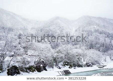 Huisje gebouw natuur sneeuw schoonheid boerderij Stockfoto © rufous