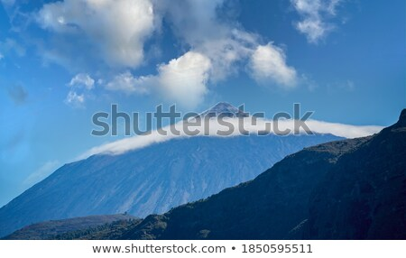 vulcânico · ilha · tenerife · pinho · floresta - foto stock © nejron
