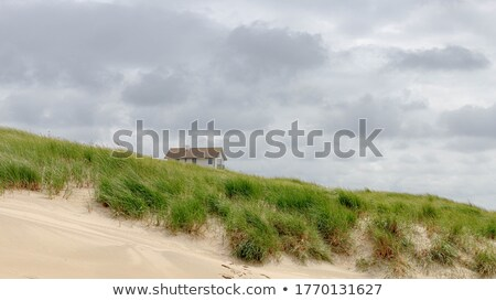 View at Dutch beach houses with cloudy sky Stock photo © gigra