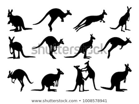 Kangaroo silhouette  Stock photo © adrenalina