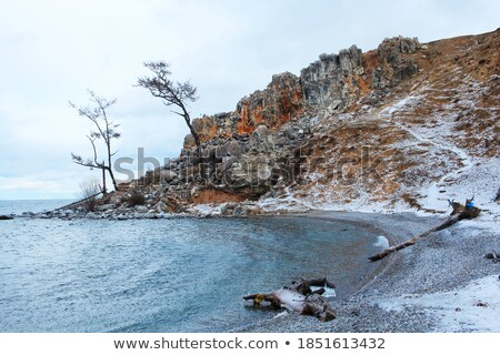 view of the beach from the lake, covered with ice Stock photo © ultrapro