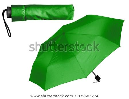 zöld · esernyő · fehér · kinyitott · izolált · víz - stock fotó © tetkoren