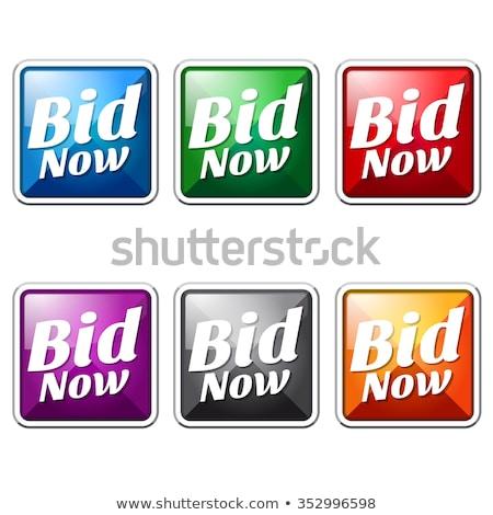 Stockfoto: Bid Now Blue Vector Icon Button