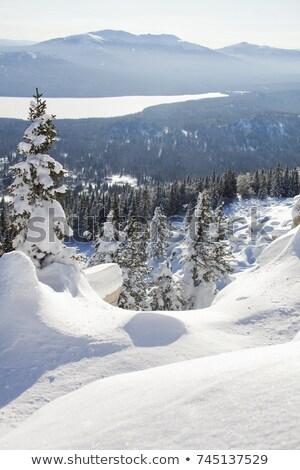 Natale giorno panorama montagna angelo polvere Foto d'archivio © ankarb