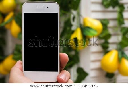 téléphone · évolution · humaine · singe · numérique · marche - photo stock © penguinline