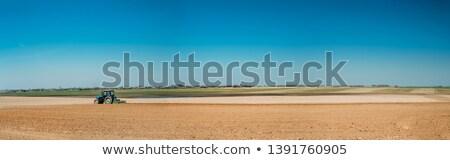 Plowed fields under blue sky Stock photo © hraska