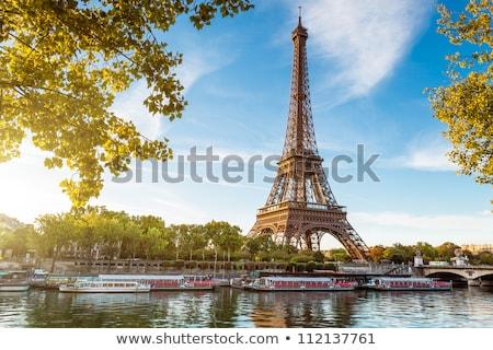 Vista París Eiffel Tower puesta de sol azul urbanas Foto stock © sdecoret