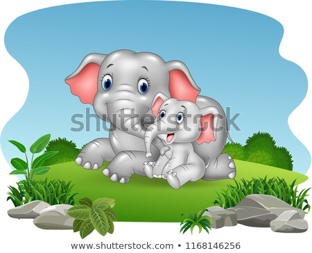Wild animals sitting on the rock stock photo © bluering