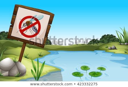 болото · изображение · лес · дизайна · завода · графических - Сток-фото © bluering
