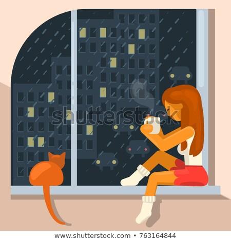 Esik az eső kívül full frame lövés ablak néz Stock fotó © AlphaBaby