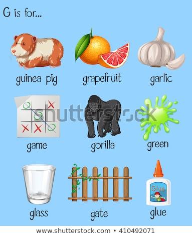 alfabeto · toranja · ilustração · crianças · criança · fruto - foto stock © bluering