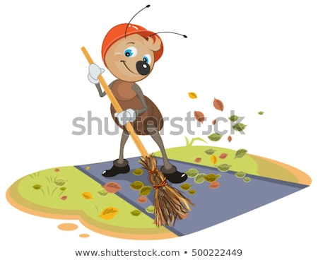 Janitor ant sweeps broom fallen leaves from footpath Stock photo © orensila