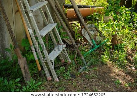 古い はしご 庭園 ヴィンテージ 登山 アップ ストックフォト © compuinfoto