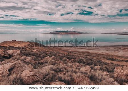 Antelope Island on the Great Salt Lake,USA. Stock photo © CaptureLight
