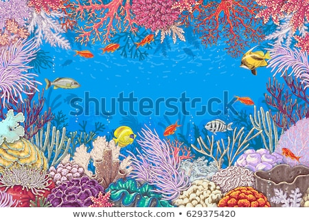 Underwater tropical background, vector illustration Stock photo © carodi