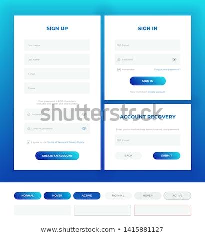 Modern fehér bejelentkezés felhasználó interfész űrlap Stock fotó © SArts