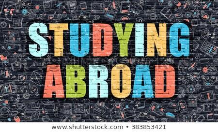 Estudar no exterior escuro parede de tijolos rabisco ícones Foto stock © tashatuvango