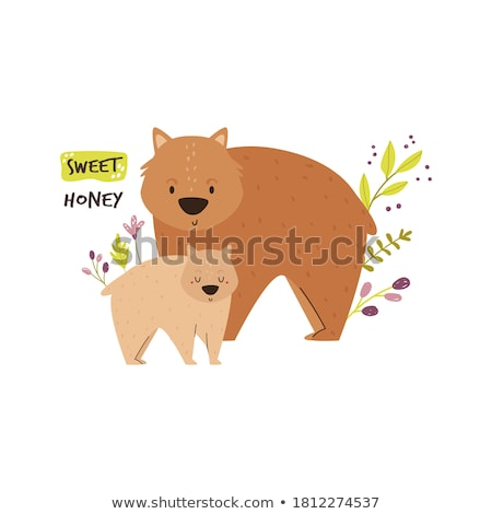 Cute wombat with happy face Stock photo © bluering