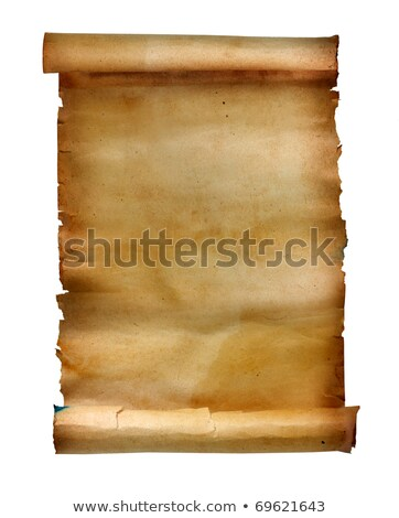 Papyrus scrolls, aged blank paper scroll, medieval yellowish manuscript stock photo © Andrei_