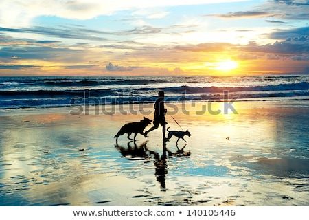 Man and dog running on beach at sunset Stock photo © IS2