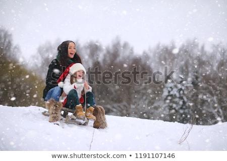 молодым · человеком · верховая · езда · сани · пейзаж · человека · снега - Сток-фото © is2