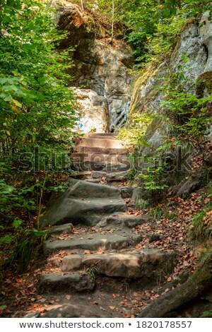 Mağara kaya yeşil yeşillik yol Stok fotoğraf © hraska