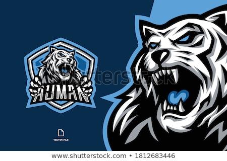 tiger esports gamer mascot stock photo © krisdog