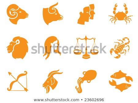 Orange Fish or Pisces Icon Vector Illustration Stock photo © cidepix