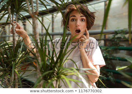 Surprised cute woman gardener standing over flowers plants in greenhouse stock photo © deandrobot
