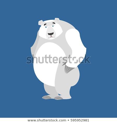 Triste Cartoon oso polar ilustración mirando blanco Foto stock © cthoman
