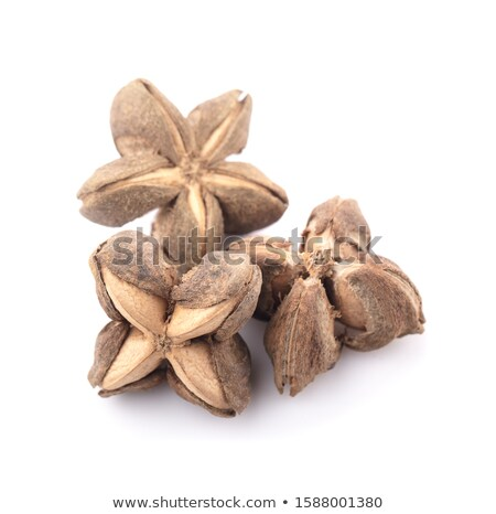 Coffee beans with cinnamon and star anise, paths Stock photo © maxsol7