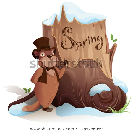 Dia cedo chegada primavera isolado branco Foto stock © orensila