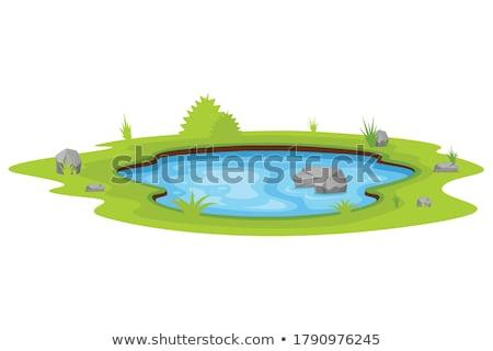 Staw parku ilustracja wody budynku krajobraz Zdjęcia stock © colematt