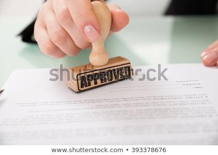 Donna d'affari approvato timbro illustrazione design isolato Foto d'archivio © 3dmask